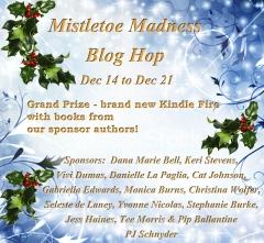 HolidayGiveaway2012-copy1